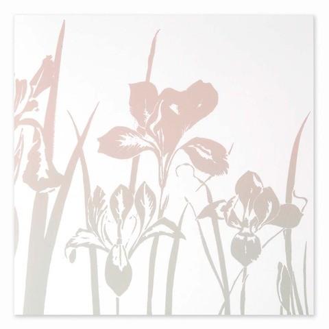 Grußkarte Schwertlilie weiss Farbverlauf pastell quadratisch