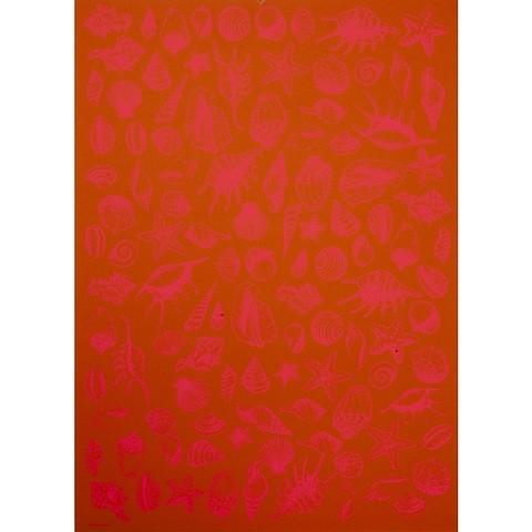 Bethge Geschenkpapier Muscheln orange 50 x 70 cm, 3 Bögen